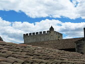 Roof of the Papal Palace in Avignon, France — Stockfoto