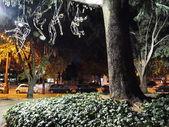 A park at Arles at night, France — Stok fotoğraf