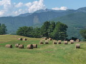 Meadow with hay bales at Argegna, Lunigiana, Italy — Stock Photo