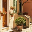 Thresholds in the little town of Poggio - Elba Island — Stock Photo
