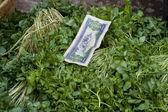 Laos geld bovenop groenten — Stockfoto