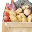 Organic vegetables crate — Foto Stock
