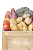 Organic vegetables crate — Stock Photo