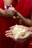 Рука подружки, держа цветок — Стоковое фото