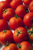 Tomatoes background — Stock Photo