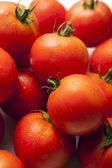 Tomaten achtergrond — Stockfoto