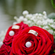 Wedding roses — Stock Photo