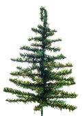 Árvore de Natal isolado — Fotografia Stock