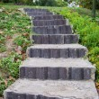 Stone steps leading up — Stock Photo