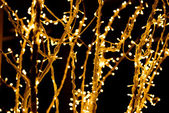 Christmas lights on the branch — Stock Photo