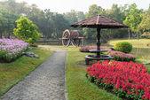 Blomma trädgård bakgrund — Stockfoto