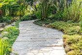 Stone pathway into garden — Stock Photo