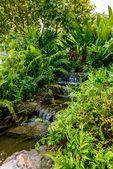 Cascade de jardin — Photo