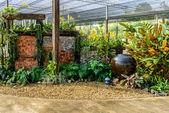 Earthenware in garden — Stock Photo