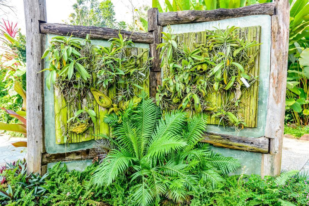 Decorare la parete orchidea — Foto Stock © sirastockid08 #38748055