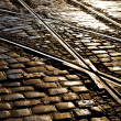 Tram rails — Stock Photo #31493759