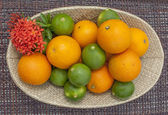 Lime and orange citrus fruit arrangement — Stock Photo