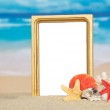 Frame, sea cockleshells and coral on the sandy coast — Stock Photo #32296613