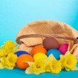 Yellow narcissuses and the eggs which have dropped out of a basket, on the blue — Stock Photo #32299013