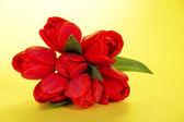 Krásný jarní tulipány banda na žlutém podkladu — Stock fotografie