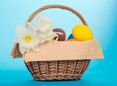 White narcissuses and Easter eggs in a basket with a napkin, on a blue background — Stock Photo