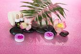 Hoja grande de una howea, aceite aromático, sal, velas, piedras, flores, sobre un fondo rosa húmedo — Foto de Stock