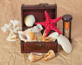 Sea shells, cockleshells, starfishes in a chest and hourglasses on old paper — Stock Photo