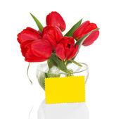 Tulipas vermelhas em um vaso transparente redondo e um cartão, isolado no branco — Fotografia Stock