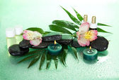 Set of fragrant oils, candles, stones, a flower on a big leaf, on a green background — Stock Photo