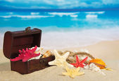 Chest with sea cockleshells and stars on sea sand — Stock Photo