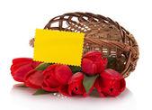 Красные тюльпаны, которые упала из корзины и пустой карты для письма, изолированные на белом — Стоковое фото