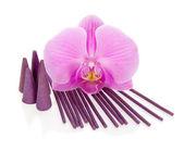 Brillante flor de una orquídea, aromático bastones y los conos aislados en blanco — Foto de Stock