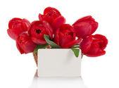 バスケット、白で隔離され、テキストを空のカードで赤いチューリップの花束 — ストック写真