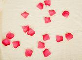 毛巾上的玫瑰花瓣。背景 — 图库照片