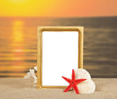 Frame, set of sea cockleshells on sand against a decline — Stock Photo