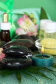 Mokré kameny, svíčky a sůl, záběr na zelené — Stock fotografie