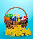 Wattled basket with eggs and flowers on a blue background — Stock Photo