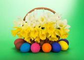 Bouquet of white and yellow narcissuses in a wattled basket and Easter eggs, on a green background — Stock Photo