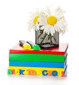 Support with camomiles on a pile of the books and two markers — Stock Photo