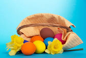 The overturned basket with eggs and yellow flowers on a blue background — Stock Photo