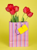 Bouquet of tulips in a gift package and an empty card on a yellow background — Stock Photo