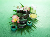Candles and aroma oil, salt, stones and a flower on a leaf howea , on a green background — Stock Photo