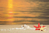 Small pebbles and starfishes against a decline — Stock Photo
