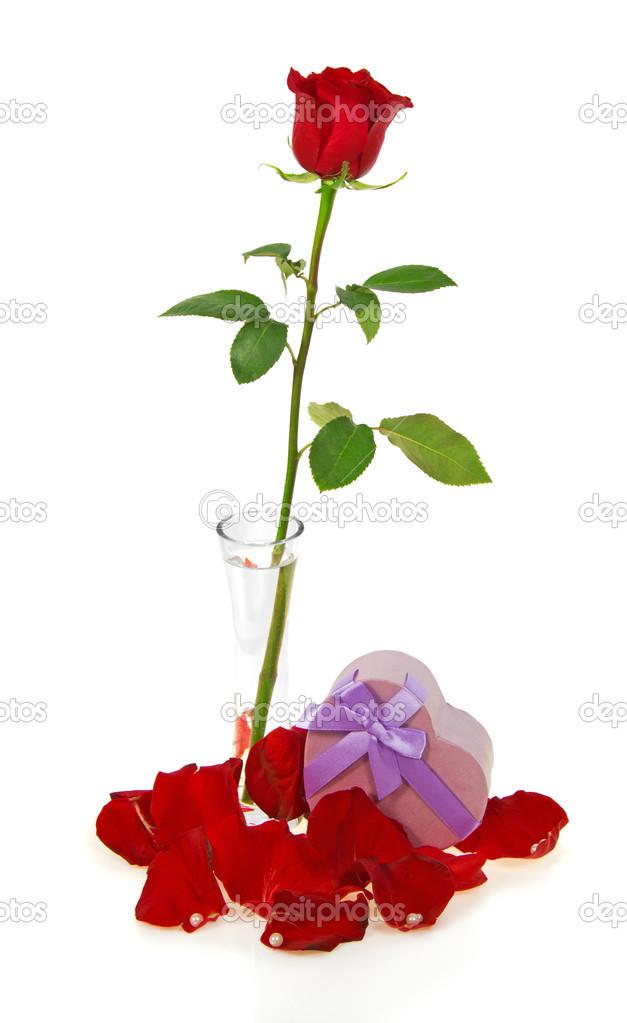 rose rouge dans un vase avec p tales perles et bo te rose en forme de c ur isol sur blanc. Black Bedroom Furniture Sets. Home Design Ideas