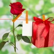 The rose, card and gift hang on a linen rope — Stock fotografie