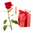 The rose, card and gift hang on rope — Stock Photo