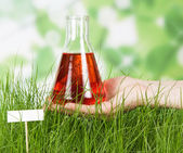 Chemical flask with experimental liquid against green grass — Stock Photo