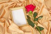 Empty photoframe with rose — Stock Photo