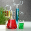 Flasks with colorful liquids — Stock Photo #49936641