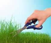 Cutting grass by hairdressing scissors — Stock Photo
